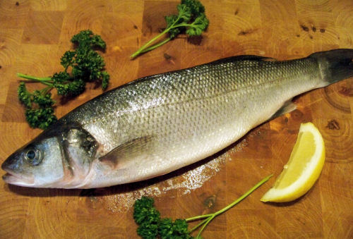 Whole Sea Bass, Fresh Fish Delivery Service Doncaster