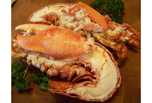 Whole Cooked Lobster Fresh Fish Delivery Service Doncaster