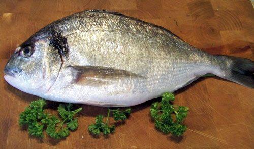 Whole Sea Bream Fresh Fish Delivery Service Doncaster